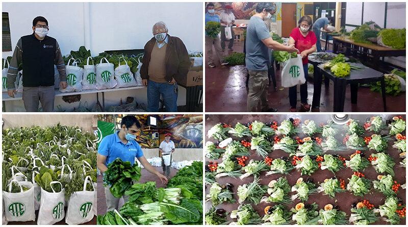 Agricultores vendieron más de 30 mil kg de alimentos hasta un 120% más barato